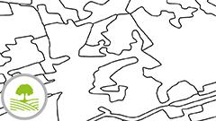 Bodenbedeckung / Land Cover
